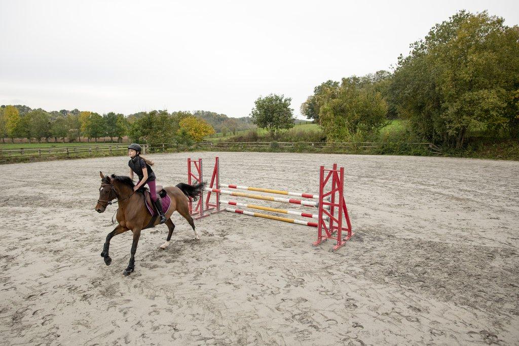 Manfaat Olahraga Berkuda untuk Kesehatan Fisik dan Mental